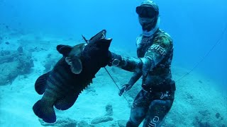 Download Hawaii Spearfishing - Of Man And Sea Video
