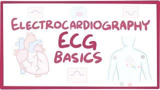 Download Electrocardiography (ECG/EKG) - basics Video