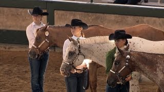 Download 4H Horses | Iowa State Fair 2013 Video