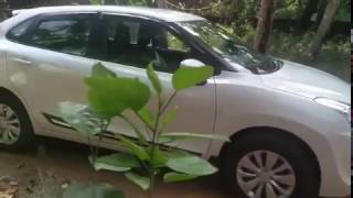 Download When i bought a maruti ♣ baleno to my home, check this ♣ | world around me Video