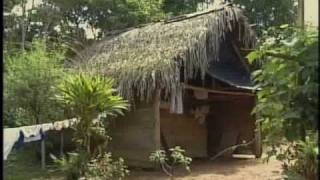 Download Parte I Documental Pueblos Indígenas y desarrollo Autónomo.wmv Video