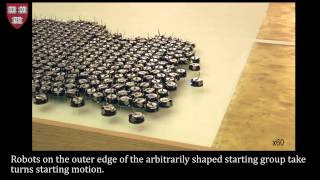 Download Programmable self-assembly in a thousand-robot swarm Video