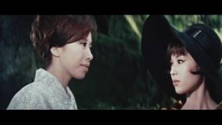 Download 卍 Video