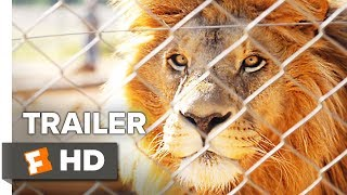 Download Trophy Trailer #1 (2017) | Movieclips Indie Video