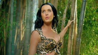 Download Top 10 Best Katy Perry Music Videos Video