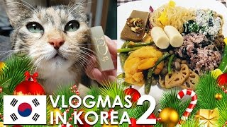 Download VLOGMAS IN KOREA #2 - Traditional stamp making in Insadong, Vegan Buffet, and KBS World Radio Show Video