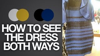Download How to see The Dress BOTH ways (Black & Blue or White & Gold) | Toy Life Video