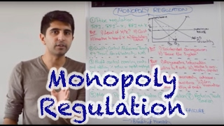 Download Y2/IB 31) Competition Policy - Monopoly Regulation Video