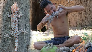Download Primitive Technology : Find food Gecko ( Lizard ) In forest - Cooking Gecko with Coconut Video