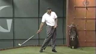 Download Tiger Woods and Butch Harmon 2 of 7 Video