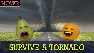 Download HOW2: How to Survive a Tornado! Video
