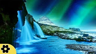 Download 8 Hour Sleep Music, Calm Music for Sleeping, Delta Waves, Insomnia, Relaxing Music, ✿3302C Video
