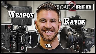 Download RED WEAPON HELIUM 8K vs RED RAVEN DRAGON 4.5K [Road 2 RED] Video