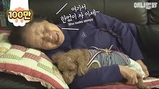 Download 치매에 걸린 할머니가 절대 잊지 않는 ″아들, 김오봉″ Video