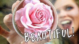 Download LANCOME BLUSH LA ROSE POWDER!- AKA THE WORLDS MOST BEAUTIFUL HIGHLIGHT? Video