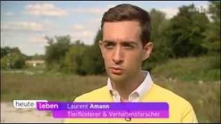 Download Tierflüsterer Laurent Amann bringt dem ziehenden und aufgedrehten Hirtenhund neues Verhalten bei Video
