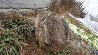 Download 여인과 사자 모습이 있는 바위 그리고 하늘 Video