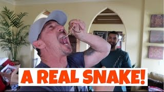Download MY DAD PRANKED ME WITH A REAL SNAKE!!! (PAYBACK) Video