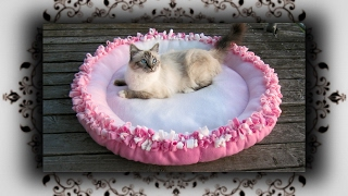 Download DIY 😻 XL Knoten Kissen Bett für Katzen & Hunde | Knot cushion bed for Cats & Dogs Video