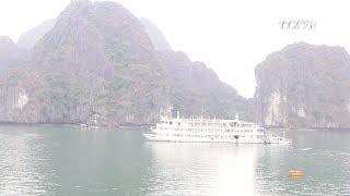 Download Hai Phong taps sea, island tourism Video