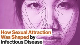 Download Sexual Attraction Is Shaped by Gut Bacteria, Infectious Diseases, and Parasites | Kathleen McAuliffe Video