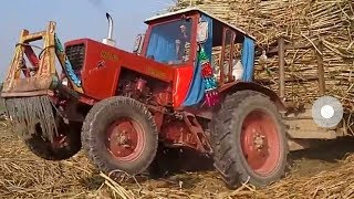 Download | Belarus MTZ 50 Showing Power | Best Tractor | agriculture and farming | جرار زراعیی بیلاروس | Video