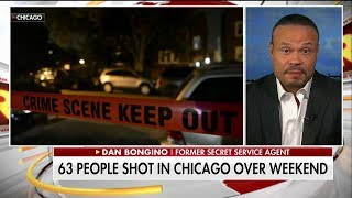 Download Bongino on Chicago Gun Violence: 'It's Time to Let Cops Be Cops' Video