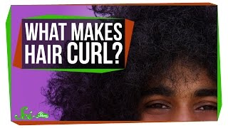 Download What Makes Your Hair Curl? Video