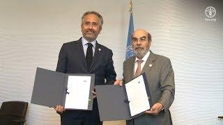 Download Signature of a Memorandum of Understanding between FAO and SeedsΧps Video