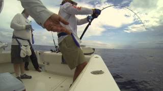Download Action of Jersey Tackle custom + Maxel OM09 on Nice Yellowfin Video