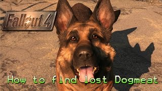 Download Fallout 4 | How to find lost Dogmeat Video