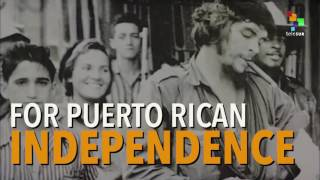 Download Che Guevara Remains Relevant Today Video