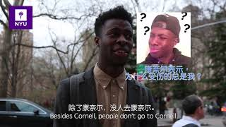 Download NYU VS Columbia University, which one is the best in NYC. (纽约大学VS哥伦比亚大学,谁才是纽约最棒的学校?) Video