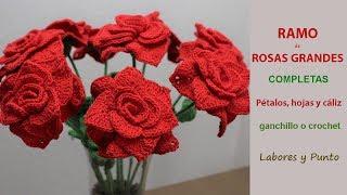 Download Como tejer Rosas Grandes a ganchillo o crochet - Labores y Punto Video