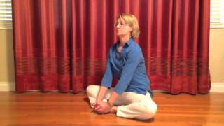 Download Water Element Exercises for balancing Kidney and Urinary Bladder Energies with Dr. Melanie Video