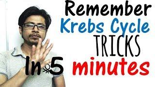 Download Krebs cycle trick made easy | Remember Krebs cycle in 5 minutes Video