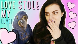 Download MEET LOVE THE BABY HYACINTH MACAW! | OH NO! We look Like The Crazy Bird Lady! Video
