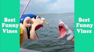 Download Funny Shark Puppet Compilation 2019 | Shark Puppet Clips - Best Funny Vines Video