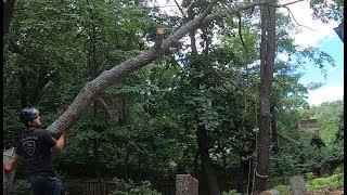 Download Unworthy 22: And Thus Man has Conquered the Mighty Tree Video
