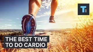 Download An exercise scientist reveals the best time to do a cardio workout Video