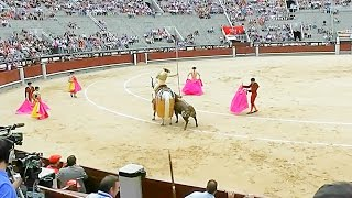 Download Our First Bullfight in Spain Video