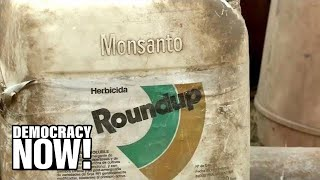 Download As EPA Insists Weed Killer Roundup is Safe, a Jury Orders Monsanto to Pay $2B to Couple With Cancer Video