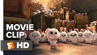 Download The Nut Job 2: Nutty by Nature Movie Clip - My Name is Mr. Feng (2017) | Movieclips Coming Soon Video