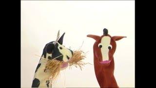 Download Baby Dolittle: Neighborhood Animals, Part 4 | Animal Videos for Kids | Baby Einstein Video