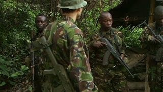 Download Chasing elephant poachers in Congo Video