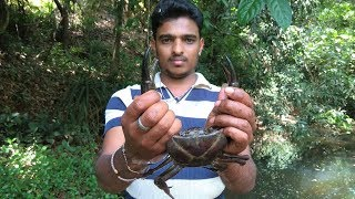 Download Catching crabs in indian river | Indian river crab | black crabs of Indian river Video