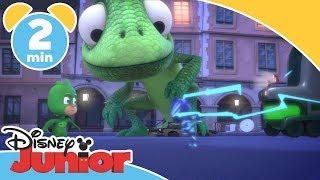 Download Pyjamashjältarna | Gecko vill rädda dinosaurien Leonard - Disney Junior Sverige Video