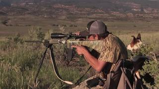 Download Coyote Hunting - THREE States in ONE weekend! - Coyote Assassins Episode 14 Video