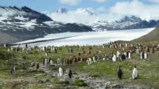 Download Norway, Spitsbergen, Iceland, Greenland & Antarctica Video