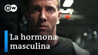Download Testosterona - La fuerza motriz de los hombres   DW Documental Video